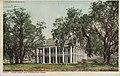 Four Oaks Old Plantation (NBY 5653).jpg