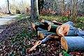 Frühlingsarbeit im Schlosspark Benrath am 8. Maerz 2019. The Geographer-11.jpg