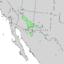 Fraxinus velutina range map 3.png