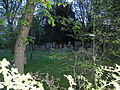 Fritzlar Judenfriedhof (6).JPG