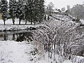 Frosty scene, Cranny - geograph.org.uk - 1627001.jpg