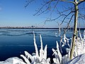 Frozen lake toronto.jpg