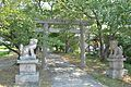 Fumori-jinja torii.JPG