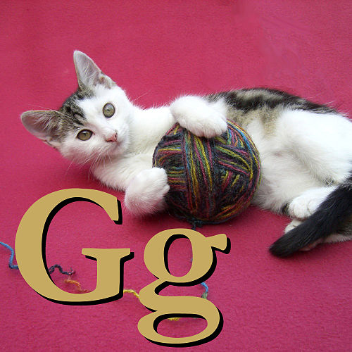 G is for Gatto.jpg