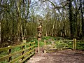 Gate into Parkmoss Wood - geograph.org.uk - 401120.jpg