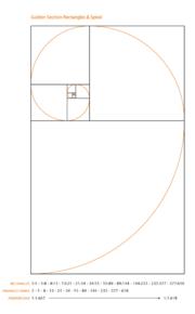 Espiral construida utilizando rectángulos con la proporción áurea.