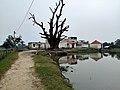 Grampanchayat Raj Bhavan, Basuki Bihari North.jpg