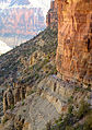 Grand Canyon National Park, North Kaibab Trail in Redwall 0990 - Flickr - Grand Canyon NPS.jpg