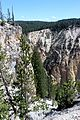 Grand Canyon of the Yellowstone 03.JPG