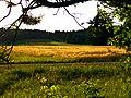 Grasmutter - panoramio.jpg