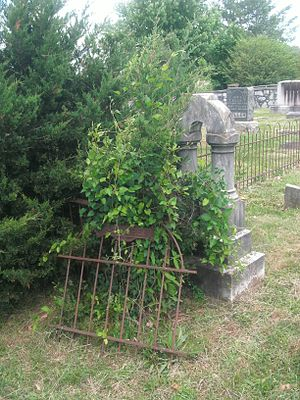 William Randolph Barbee - The grave of Barbee and his wife as it appeared in May, 2016