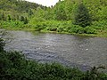 Greenbrier River (downstream from Durbin, West Virginia, USA) 6 (27170723773).jpg