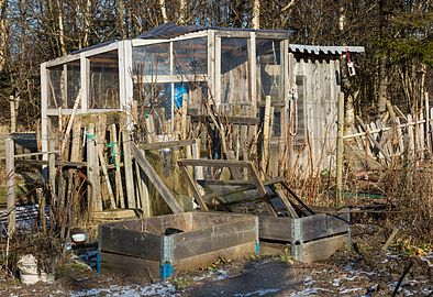 Greenhouse in Dalskogens allotments.jpg