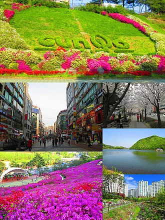 Gunpo - Clockwise from top: City logo on a hillside near Surisan Station, cherry blossoms in Geumjeong-dong, Banwol Reservoir, apartment complex in Bugok-dong, Royal Azaleas Hill, downtown Sanbon.