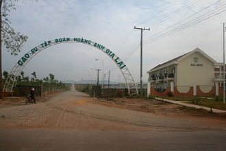 Attapeu Province - HAGL rubber plantation along the road to Vietnam