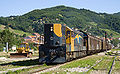 HK 661 004 with a freight train at Kaçanik.jpg