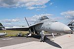 HN-438 F-A-18C Hornet Finnish Air Force ILA 2012.jpg