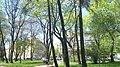 Halytskyi District, Lviv, Lviv Oblast, Ukraine - panoramio (211).jpg