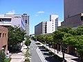 Hamamatsu - panoramio - kcomiida (5).jpg