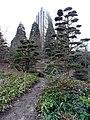 Hamburg Innenstadt Planten Blomen Japanischer Garten Radisson 8556 201802.jpg