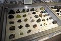 Harvard Museum of Natural History (DerHexer) 2012-07-20 10.jpg