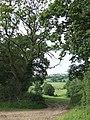 Hawkchurch Bridleway 44 - geograph.org.uk - 482037.jpg