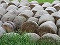 Haybales in Field - Nakafurano - Hokkaido - Japan (48006120127).jpg