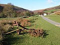 Haybob at Blaen-bwch - geograph.org.uk - 273585.jpg