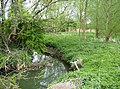 Headwaters of the Cherwell - geograph.org.uk - 494002.jpg