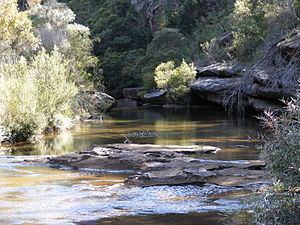 Stream - Creek in Heathcote National Park, Australia