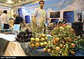 Herbs at Medicinal Plants and Traditional Medicine exhibition in Iran's capital 02.jpg