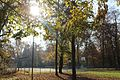Herbst im Ismaning.jpg