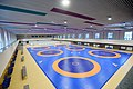 Heydar Aliyev Sports and Exhibition Complex 2.jpg