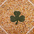 Historic Church of Saint Patrick (Toledo, OH) - floor, shamrock.jpg