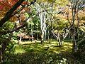 Historic Monuments of Ancient Kyoto (Kyoto, Uji and Otsu Cities)-122740.jpg