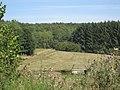 Hochwaldalm Wadrill - panoramio.jpg