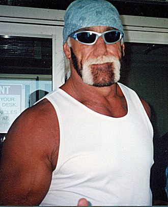 New World Order (professional wrestling) - Hulk Hogan during his time with the nWo
