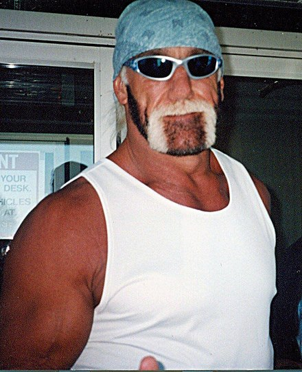 Hulk hogan wikiwand hogan during his time with the nwo pmusecretfo Gallery