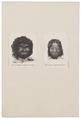 Homo sapiens - Aboriginal, Australië - 1700-1880 - Print - Iconographia Zoologica - Special Collections University of Amsterdam - UBA01 IZ19500011.tif