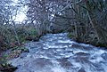 Horner Water - geograph.org.uk - 1660717.jpg