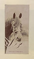 Horse's head (HS85-10-16305).jpg