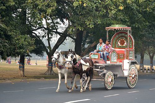 Horse Carriage - Casuarina Avenue - Kolkata 2013-01-05 2381.JPG