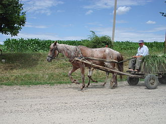 Agriculture in Moldova - Horse-drawn wagon in the Orhei District