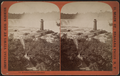 Horseshoe Fall from Goat Island, by Barker, George, 1844-1894 6.png