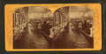 Horticultural Hall, interior, from Robert N. Dennis collection of stereoscopic views 3.png