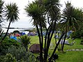 Hotel camping field for The Isle of Jura Fell Race - geograph.org.uk - 1451021.jpg