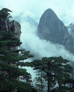 黄山の画像 p1_19