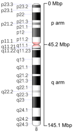 Map of Chromosome 8