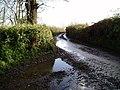 Huntley Lane - geograph.org.uk - 1619640.jpg