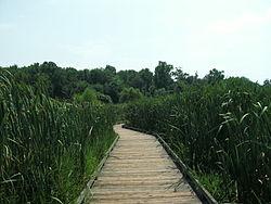 Huntley Meadows Park Wikipedia